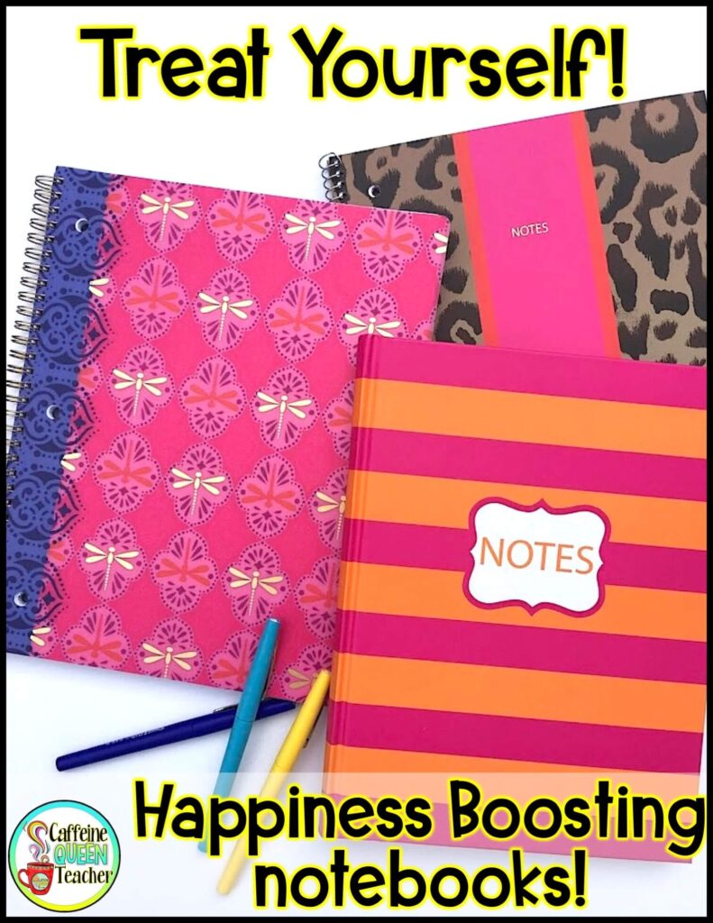 look-like-an-organized-teacher-with-fun-notebooks